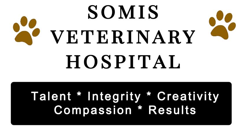 Somis Veterinary Hostpital